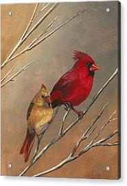 Cardinal Mates Acrylic Print by Terri  Meyer