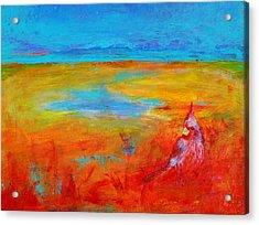 Cardinal Acrylic Print by Valerie Lynch
