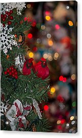Acrylic Print featuring the photograph Cardinals At Christmas by Patricia Babbitt