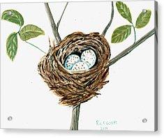 Cardinal's Nest Acrylic Print by Richard Goohs