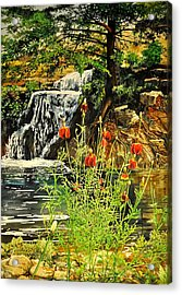 Carey Falls At Star Ranch Acrylic Print
