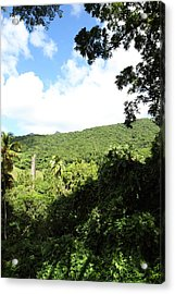 Caribbean Cruise - St Kitts - 1212224 Acrylic Print by DC Photographer
