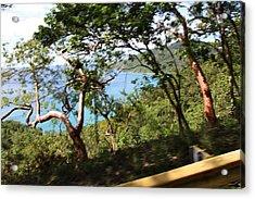 Caribbean Cruise - St Thomas - 1212110 Acrylic Print by DC Photographer