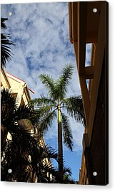 Caribbean Cruise - St Thomas - 121239 Acrylic Print by DC Photographer