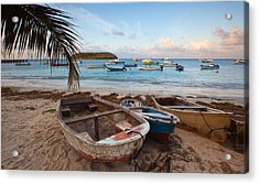 Caribbean Morning Acrylic Print by Patrick Downey