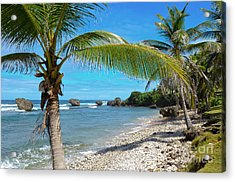 Caribbean Paradise Acrylic Print by Karen English