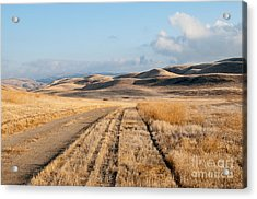 Carizzo Plains Nm 2-8559 Acrylic Print by Stephen Parker