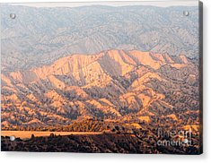 Carizzo Plains Nm  2-8574 Acrylic Print by Stephen Parker