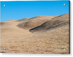 Carizzo Plains Nm  2-9647 Acrylic Print by Stephen Parker