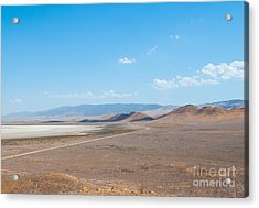Carizzo Plains Nm  5-9649 Acrylic Print by Stephen Parker