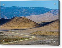 Carizzo Plains Nm  5-9655 Acrylic Print by Stephen Parker