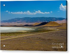 Carizzo Plains Nm  5-9656 Acrylic Print by Stephen Parker