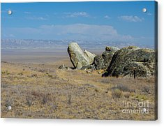 Carizzo Plains Nm  5-9657 Acrylic Print by Stephen Parker