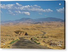 Carizzo Plains Nm  5-9664 Acrylic Print by Stephen Parker