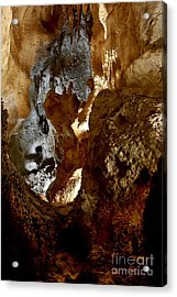 Carlsbad Caverns #1 Acrylic Print
