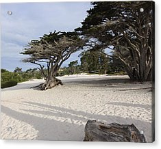 Acrylic Print featuring the photograph Carmel by Kandy Hurley