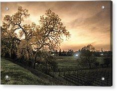 Carole's Vineyard Acrylic Print