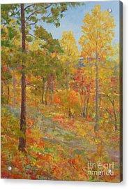 Carolina Autumn Gold Acrylic Print