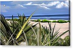 Carolina Dunes Acrylic Print