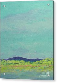 Carolina Spring Day Acrylic Print