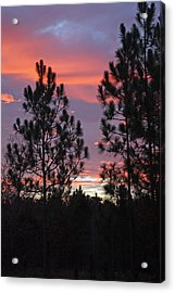 Carolina Sunset Acrylic Print by Carolyn Stagger Cokley