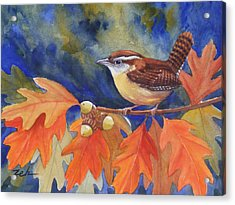 Carolina Wren In Autumn Acrylic Print