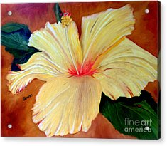 Carols Hibiscus Acrylic Print by Sharon Burger