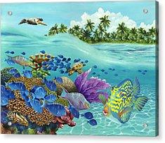 Coral Carnival Acrylic Print by Carolyn Steele