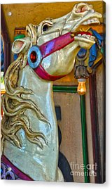 Carousel Horse - 02 Acrylic Print by Gregory Dyer