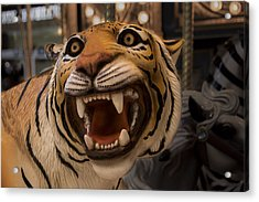 Acrylic Print featuring the photograph Vintage Carousel Tiger - 1 by Renee Anderson