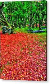 Carpet Of Love Acrylic Print by Midori Chan