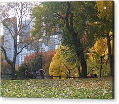 Acrylic Print featuring the photograph Carriage Ride Central Park In Autumn by Barbara McDevitt