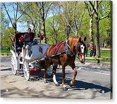 Carriage Ride In Central Park Acrylic Print by Eleanor Abramson