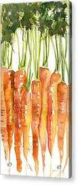 Carrot Bunch Art Blenda Studio Acrylic Print by Blenda Studio