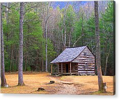 Carter Shield's Cabin II Acrylic Print by Jim Finch