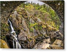 Cascade Creek Acrylic Print by Adrian Evans