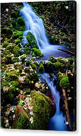 Cascade Creek Acrylic Print by Chad Dutson