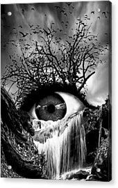 Cascade Crying Eye Grayscale Acrylic Print by Marian Voicu