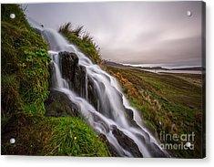 Cascade Acrylic Print by Matt  Trimble