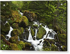 Cascades In The Woods Acrylic Print by Andrew Soundarajan