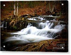Cascades Acrylic Print