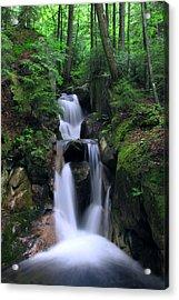 Cascading Brook Acrylic Print