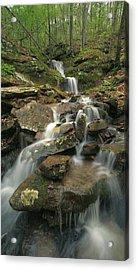 Cascading Creek Mulberry River Arkansas Acrylic Print by Tim Fitzharris