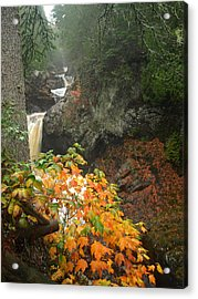 Cascading Steps Acrylic Print by James Peterson