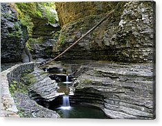 Acrylic Print featuring the photograph Cascading Wirlpools In Watkins Glen by Gene Walls