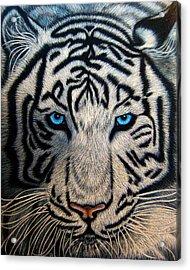 Casper Acrylic Print
