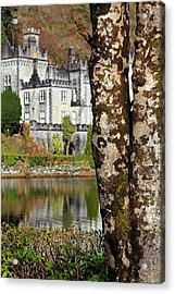 Castle Behind The Trees Acrylic Print