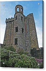 Castle In The Sky Acrylic Print by Kathleen Scanlan