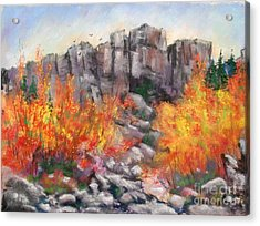 Castle Rock Acrylic Print by Bruce Schrader