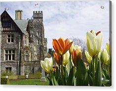 Castle Tulips Acrylic Print